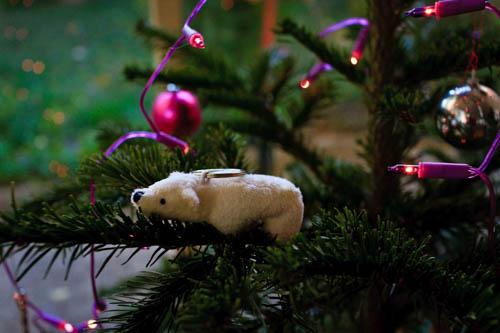 2014.12_christmasphotos_cloudia_04